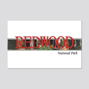 Redwood Americasbesthistory.com Mini Poster Print