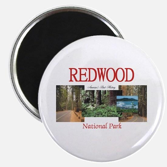Redwood Americasbesthistory.com Magnet