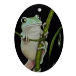 Whites Tree Frog Ornament (Oval)