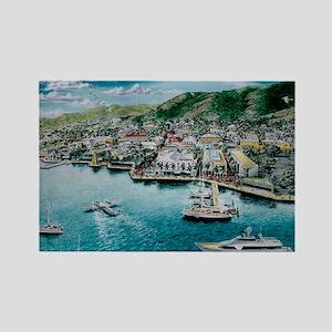 St. Croix, Virgin Islands Rectangle Magnet