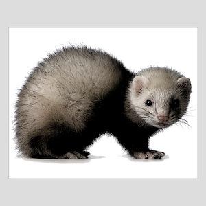 Dark ferret Small Poster