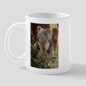 Koala Bear 7 Mug