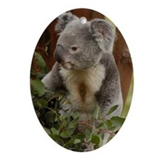 Koala Bear 7 Oval Ornament