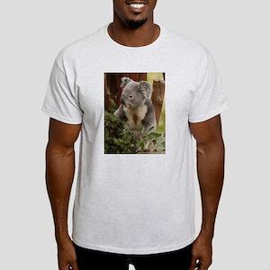 Koala Bear 7 Ash Grey T-Shirt