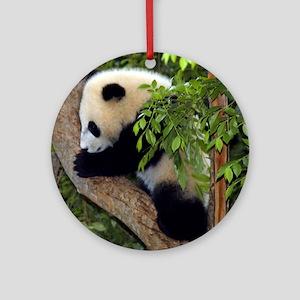 Giant Panda Baby 2 Ornament (Round)