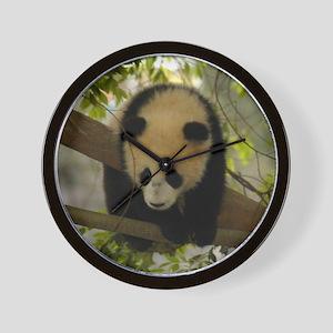 Panda Baby Wall Clock
