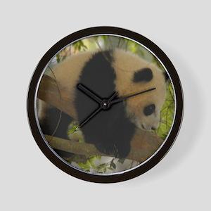 Baby Panda Cub Wall Clock