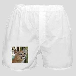 Cougar Cub 5 Boxer Shorts