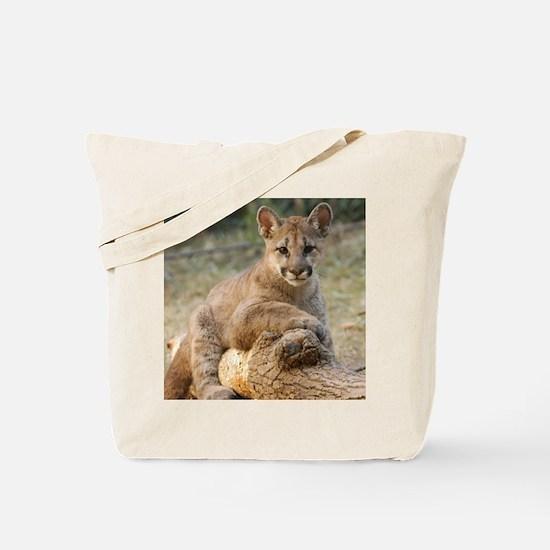 Cougar Cub 4 Tote Bag