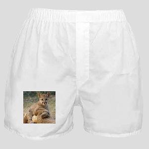 Cougar Cub 4 Boxer Shorts