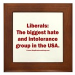 Liberals Hate More Framed Tile
