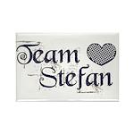 Team Stephen Rectangle Magnet (100 pack)
