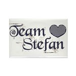 Team Stephen Rectangle Magnet (10 pack)