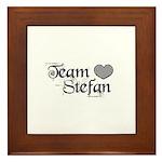 Team Stephen Framed Tile