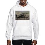 Wagon Wheel Morning Sweatshirt