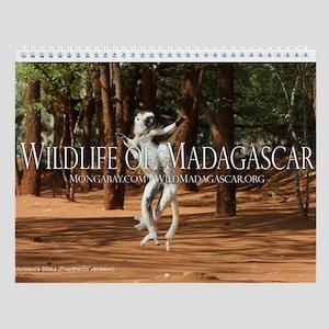 Wildlife of Madagascar 12-Month Wall Calendar