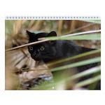 Geoffroy Cat Wall Calendar