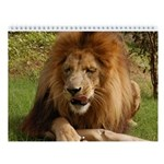 Cameron the African Lion Wall Calendar
