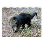 Bear Cats & Bengal Cats Wall Calendar