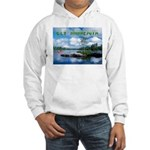 Ely Wilderness Scene Hooded Sweatshirt
