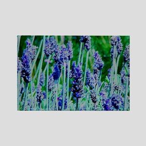 send flowers gifts lavender Rectangle Magnet