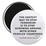 ENDING TERRORISM Magnet