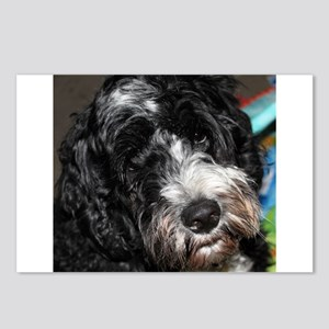 Puppy Postcards (Package of 8)