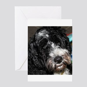 Puppy Greeting Card