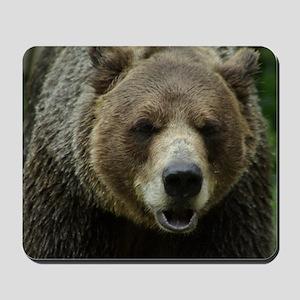 Grizzly Bear Mousepad