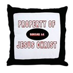 Property Design (Red) Throw Pillow