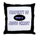 Property Design (Blue) Throw Pillow