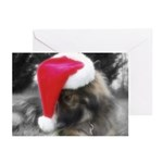 ShilohXmas Greeting Cards (Pk of 10) :what?