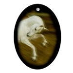 Dancer Lipizzan Ornament (Oval)