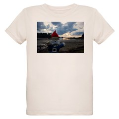 https://i3.cpcache.com/product/420227005/blue_bay_gnome_tshirt.jpg?side=Front&color=Natural&height=240&width=240