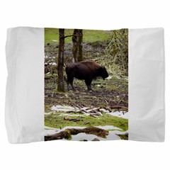 https://i3.cpcache.com/product/420228082/bison_pillow_sham.jpg?side=Front&color=White&height=240&width=240