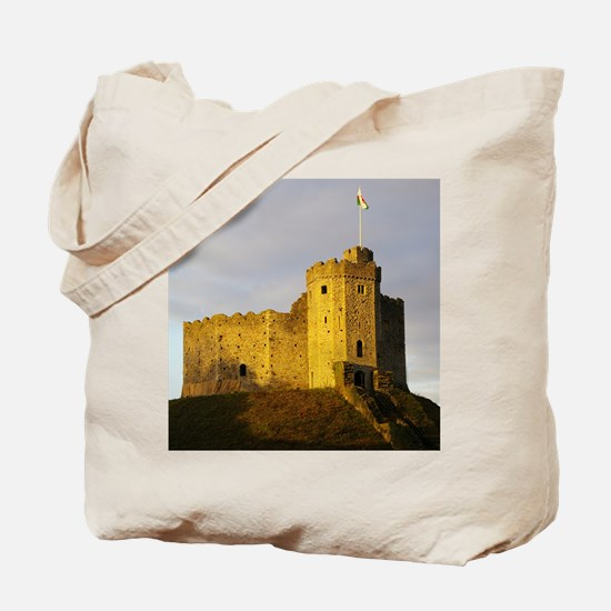 Castle at sunset Tote Bag