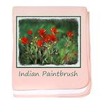 Indian Paintbrush baby blanket