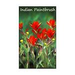 Indian Paintbrush Sticker (Rectangle 10 pk)