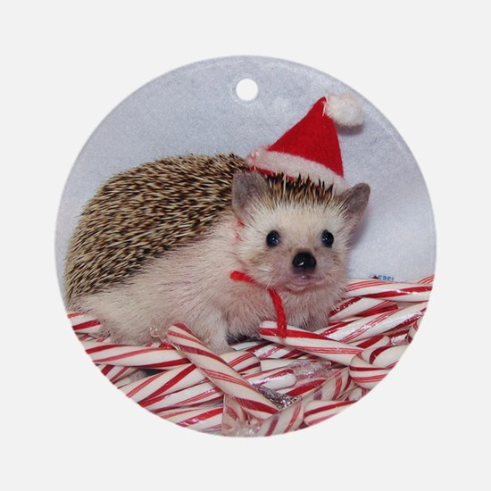 Maizy Hedgehog Ornament (Round)
