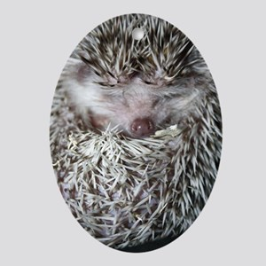 Dennis Hedgehog Ornament (Oval)