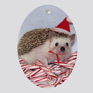 Maizy Hedgehog Oval Ornament