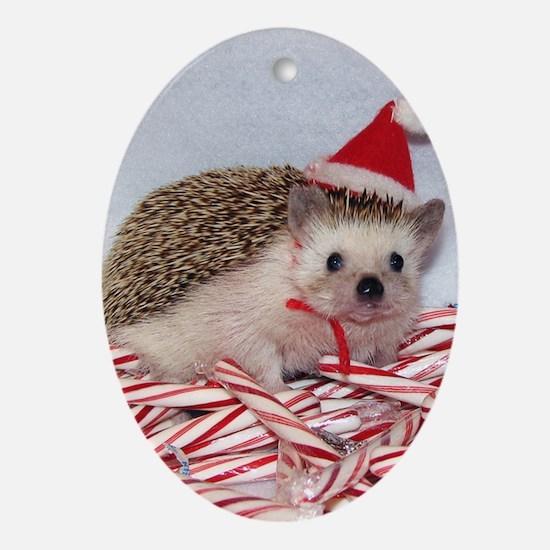 Maizy Hedgehog Oval Ornament