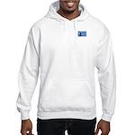 Air Force Stamp Line Art Hooded Sweatshirt