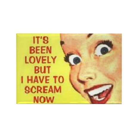 Scream Now Rectangle Magnet