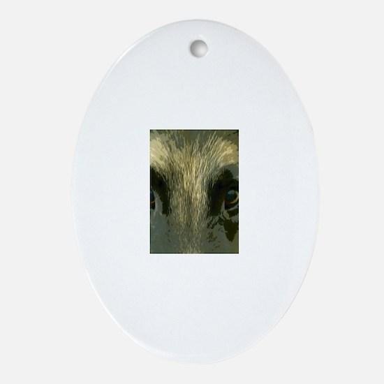 Eyes Oval Ornament