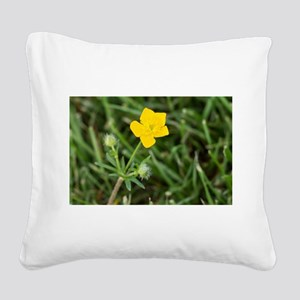 Buttercup Square Canvas Pillow
