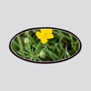Buttercup Patch