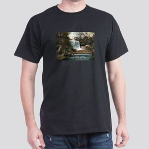 1906 Minnehaha Falls Dark T-Shirt
