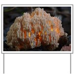 Coral Fungus Yard Sign