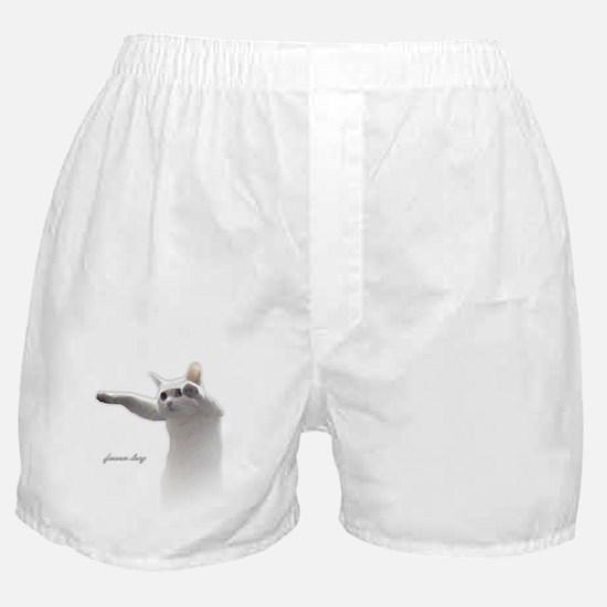 Forever Longcat Boxer Shorts